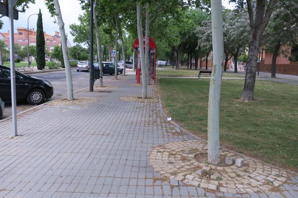 Avenida Rigoberta Menchú